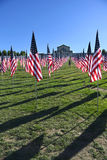 Флаги доблести вне музея изобразительных искусств Сент-Луис Стоковая Фотография