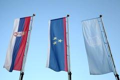 Флаги Сербии, Воеводины и города Novi унылых Стоковые Изображения RF