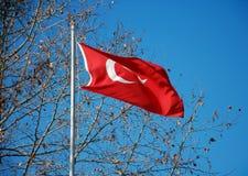 Флаги Турции Стоковое Фото
