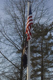 Флаг американца и ПЛЕНА показанный против деревьев зимы Стоковые Фото