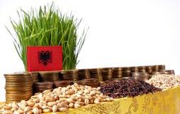 Флаг Албании развевая с стогом монеток и кучами семян Стоковая Фотография