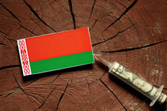 Флаг Беларуси на пне при шприц впрыскивая деньги Стоковые Изображения