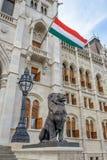 флаг Венгрия Стоковые Фотографии RF