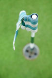 Флаг и отверстие гольфа Стоковая Фотография RF