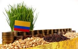 Флаг Колумбии развевая с стогом монеток денег и кучами пшеницы Стоковые Изображения