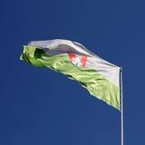 Флаг Любляны Стоковое Фото