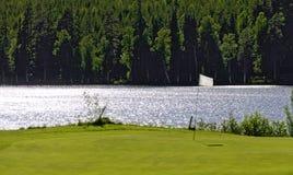 Флаг на зеленом цвете Стоковая Фотография RF