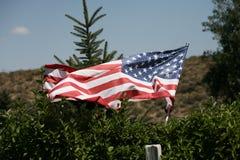 Флаг страны США Стоковое Изображение