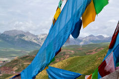 Флаг Тибета Стоковые Изображения RF