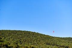 Флаг Турции с голубым небом и лес вокруг его стоковые фото