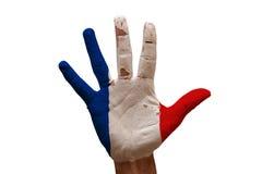 флаг Франция ладони Стоковое Изображение