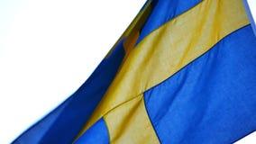 Флаг шведского языка в ветре акции видеоматериалы