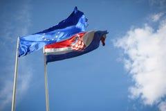 Флаг EC Стоковые Изображения RF