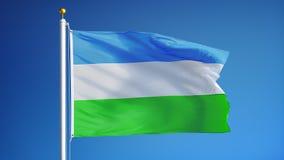 Флаг Molossia в замедленном движении плавно закрепил петлей с альфой акции видеоматериалы