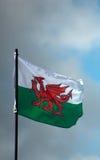 Флаг Welsh Стоковое Изображение