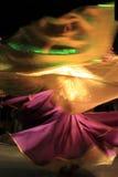 Фламенко Стоковая Фотография