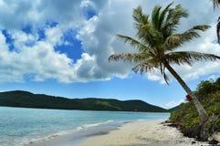 Фламенко Playa, PR Culebra Стоковые Фотографии RF