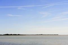 Фламинго в Camargue Стоковое Фото