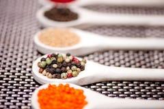 Флейворы горячих специй смешивают с черным перцем, corns перца Стоковая Фотография RF