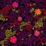 Флористическая безшовная картина на черной предпосылке также вектор иллюстрации притяжки corel Стоковое Изображение