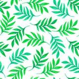 Флористическая безшовная картина с зелеными листьями Стоковая Фотография RF