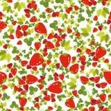 Флористическая безшовная картина с листьями и ягодами на светлой предпосылке Стоковые Изображения