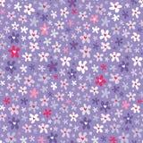 Флористическая безшовная картина с маленькими яркими цветками Стоковое фото RF
