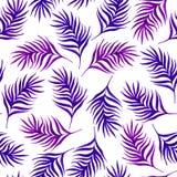Флористическая безшовная картина с пурпуром выходит на белую предпосылку Стоковое Фото