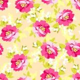 Флористическая безшовная картина с розовыми цветками Стоковое фото RF