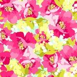 Флористическая безшовная картина с розовыми цветками Стоковые Фотографии RF