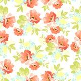 Флористическая безшовная картина с розовыми цветками Стоковое Фото