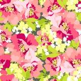 Флористическая безшовная картина с цветками одичалыми подняла Стоковое Фото