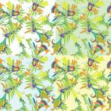 Флористическая безшовная картина Стоковое фото RF