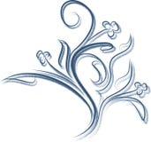 Флористическая ветвь с тенью Стоковое фото RF