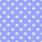 флористическая картина безшовная Стоковая Фотография RF