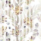 флористическая картина безшовная Succulents, папоротники, тернии Стоковое фото RF