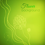 Флористическая концепция предпосылки природы иллюстрация Стоковое Изображение RF
