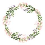 Флористическая концепция рамки круга Стоковое Изображение RF