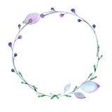 Флористическая краска элементов с акварелями Стоковое Фото
