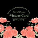 Флористическая поздравительная открытка с красными розами Стоковая Фотография RF