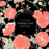 Флористическая поздравительная открытка с красными розами Стоковые Фото