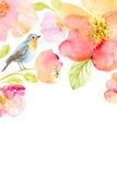 Флористическая предпосылка акварели с красивыми цветками Стоковые Фотографии RF