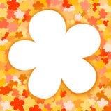 Флористическая предпосылка с белым цветком Стоковое Фото