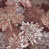 Флористическая предпосылка с зацветая хризантемами Стоковое Изображение
