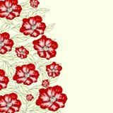 Флористическая предпосылка с цветками мака Стоковые Фото