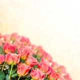 Флористическая предпосылка 16 Стоковое Изображение