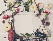Флористическая рамка высушенных цветков на белой древесине, взгляд сверху Стоковые Изображения RF