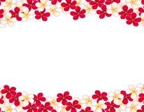 флористическая рамка обрамляет серию Стоковое фото RF