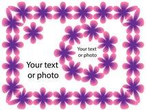 флористическая рамка обрамляет серию Стоковые Изображения RF