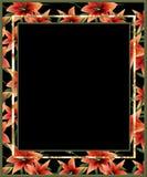 Флористическая рамка с lilly цветками Стоковые Фотографии RF